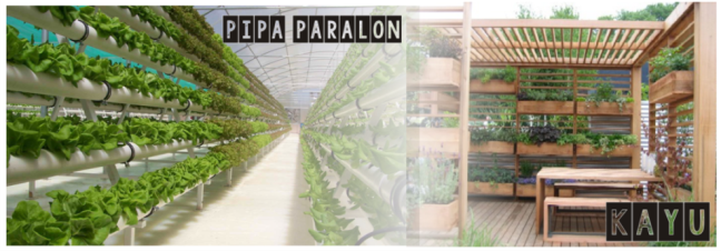 Pipa Paralon